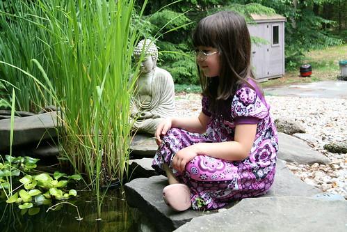 Lotus Dova