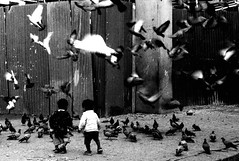 (*Bang Bang Boy*) Tags: travel nepal blackandwhite birds children pigeons pointandshoot kathmandu minoltadimagef200