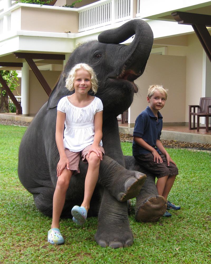 Hotel Elephant 01