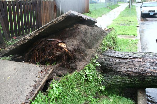 South Minneapolis Tornado, what?
