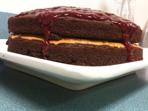 Chocolate Cake with Raspberry Glaze