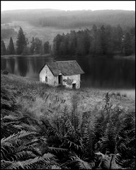 Drumore Boathouse B&W (angus clyne) Tags: trees rain forest scotland angus decay loch boathouse flikcr drumore
