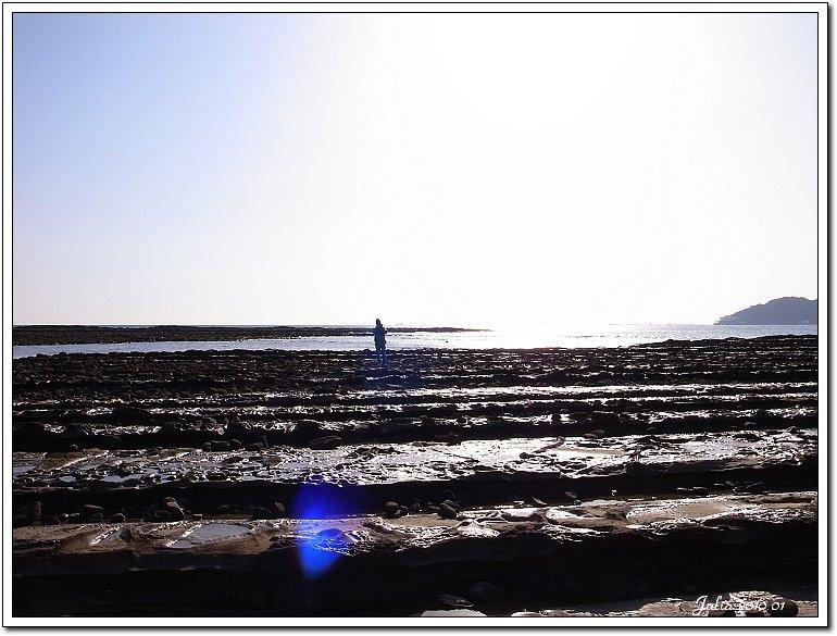 青島海岸 (17)