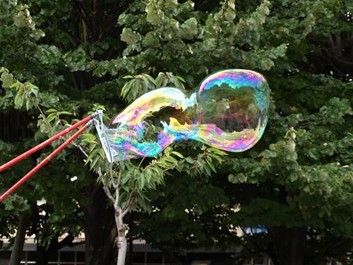La burbuja 1