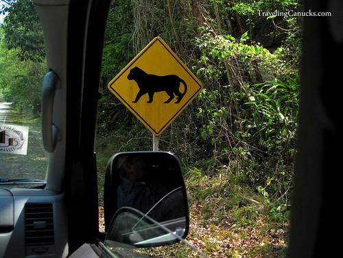Jaguar Street Sign, Tikal National Park