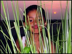 Fake moustache (C|-|ANDRA) Tags: sunset portrait people sun india cute green grass children asian evening kid asia child sony fake cybershot moustache northeast dsc h20