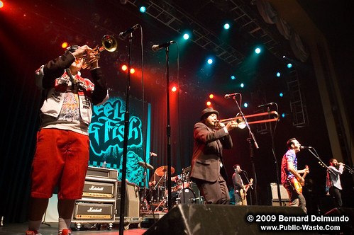 Reel Big Fish 045