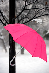 Hanging in the snow (.craig) Tags: pink winter italy snow milan cold tree ice umbrella handle italia branch milano branches explore treetrunk trunk hanging snowing boughs sleet parcosempione