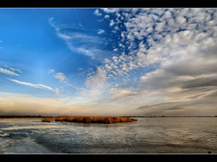 a lonely lake (atsjebosma) Tags: winter sky ice reed nature clouds landscape cloudy nederland thenetherlands wolken windy explore lonely groningen coldweather bewolkt thaw blowy winderig abigfave dooi anawesomeshot awesomeshotaward january2009 noskatingtoday badweatheriscoming vosplusbellesphotos