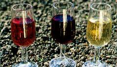 Salta promociona sus vinos en Bolivia