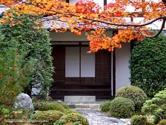 Tempio Jingo-Ji