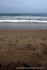 DSC_0157 (fixosign) Tags: marinabeach chennai 1755mm d40