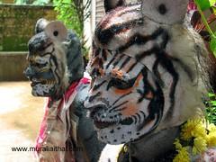 Huli Vesha (Aithal's) Tags: art body culture bodypainting tradition pili bodyart udupi dasara mangalore huli murali vesha hulivesha aithal pilivesha paininting mangaloretigers aithals udupipili udupihuli