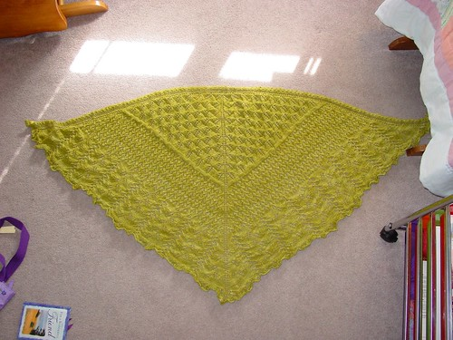 Bee Fields Shawl