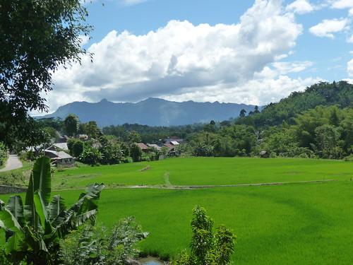 Pays Toraja Sud (42)