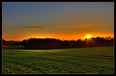 Sonnenstrahlen (faca1009) Tags: trees sunset sky naturaleza sun nature field clouds germany landscape deutschland abend sonnenuntergang natur feld wiese himmel nubes alemania nrw rays 1001nights duisburg landschaft sonne wald bume lightstream lichtstrahlen strahlen goldstaraward rubyphotographer vanagram