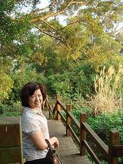 媽媽 楊春