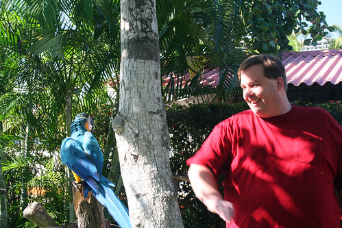 Mike Shows Mexican Parrot Some Karate Moves
