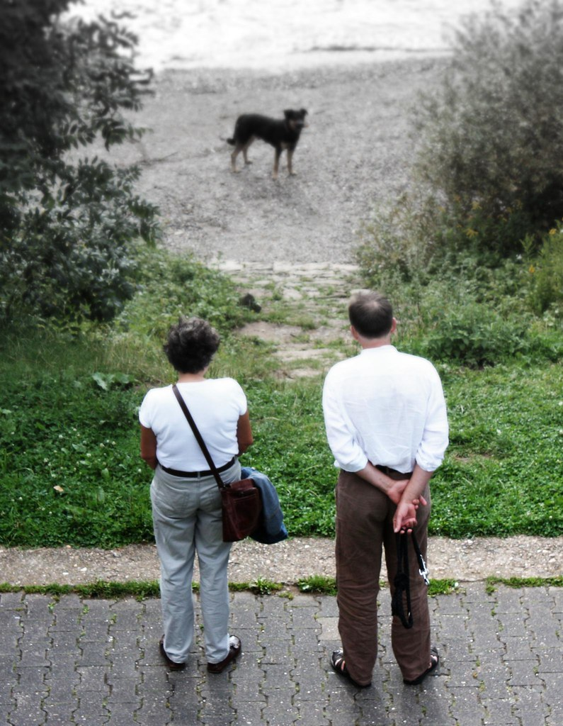 couple waiting for dog