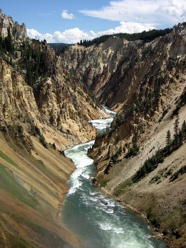 Grand Canyon of Yellowstone, from Lower Falls brink