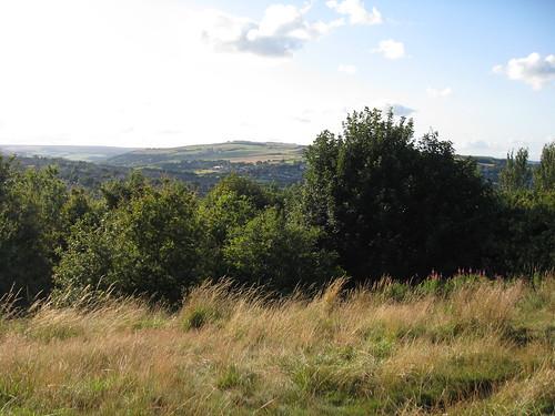 Bole Hills
