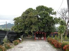 DSCN5848