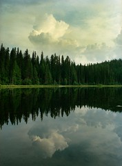 Champion Lakes MF (Airchinapilot) Tags: trees vacation lake canada reflection 120 mamiya film water mediumformat landscape mirror bc britishcolumbia scan provincialpark manualcamera canoscan8400f championlakes mamiya645protl ektar100