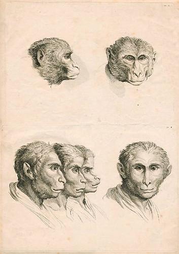 028-Le Système de Lebrun sur la Physionomie 1806