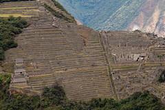Machu Picchu viewed from Putucusi (jimmyharris) Tags: peru inca ruins view machupicchu urubamba putucusi