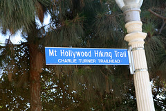 Mt. Hollywood Hiking Trail