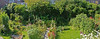 Frans, gefeliciteerd met De Mooiste Zomertuin van 2009 op TV West! (Ciao Anita!) Tags: flowers friends panorama tree netherlands fruit garden nederland denhaag boom photomerge tuin fiori 1001nights albero frutta bloemen olanda giardino zuidholland tvwest