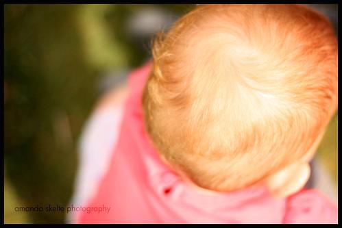 sawyer curl