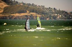 Windsurfing (002) (Steven P. Moreno) Tags: california travel sport northerncalifornia swim tourist pacificocean windsurfing sanfranciscobay crissyfield winsurfer stevenmorenospix surfacewatersport stevenpmoreno