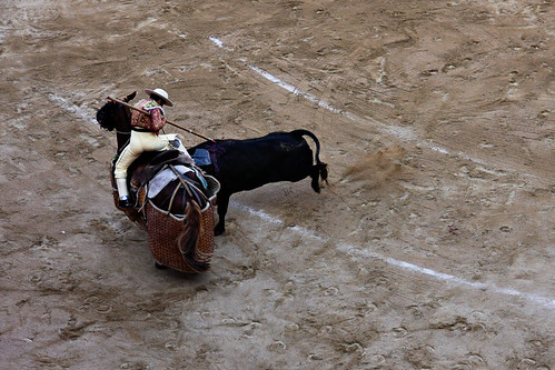 bull fight- hittin the horse2
