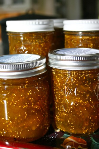 fig preserves with fennel and ginger