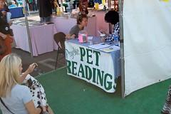 Animal Psychic  Reading