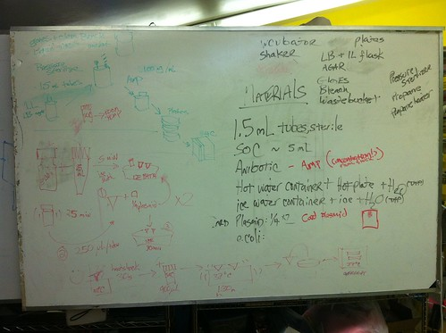 2011-05-11 visual protocol