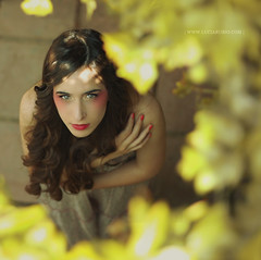 The yellow Corner (Lucia Rubio) Tags: portrait primavera girl beauty yellow spring chica retrato amarillo belleza picado canon500d womanportrait fotografogranada luciarubio mariarubioblogger
