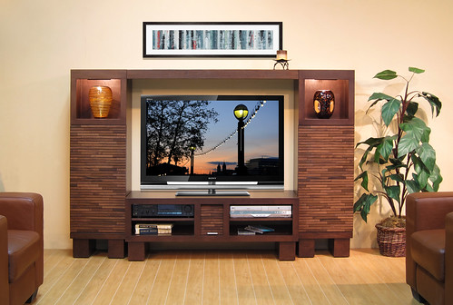 Modern Entertainment Center Low Profile Wall Pacific 48 Mocha A