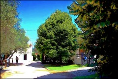 Miranda do Corvo - Quinta da Paiva (mariag.) Tags: portugal maria centro quinta miranda 2009 coimbra picnik beira corvo paiva