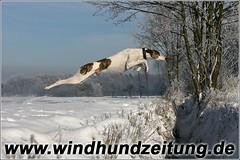 Sprinters-Graben-Sprung