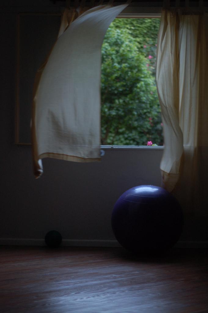 ventana pelota y flor 01