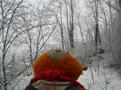 YUMOS (yumos_alioglu) Tags: world bear winter red orange selfportrait snow man cute me self photography photo snowman eyes flickr peace photographer earth handsome blogger 2009 kar portrair cuteboy kış yumos yumoş myfacebook yumosalioglu yumoşalioğlu yusufalioglu