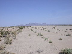 Rice Army Airfield future solar 496a (DB's travels) Tags: california abandoned desert rice wwii ca62 armyairfield