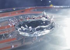2009_0129Fuji0082 (NewfoundlandGirl) Tags: water newfoundland splash waterdrops fujifinepix boost newfoundlandgirl pwactions s8100