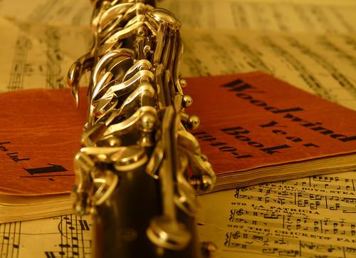 clarinet by trevorappleton.