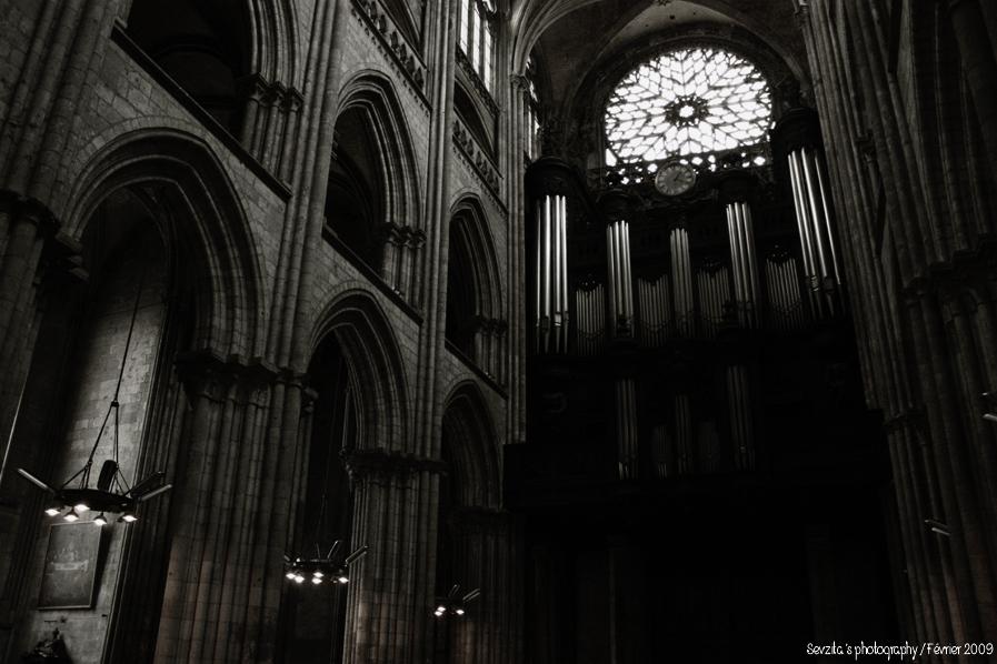 Notre Dame #6