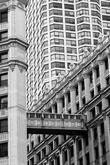 Cacophony 2 (CarusoPhoto) Tags: chicago caruso johncaruso carusophoto