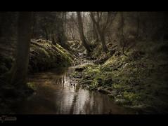 Stream, Winkworth Arboretum (kerto.co.uk) Tags: blueribbonwinner kerto platinumphoto vosplusbellesphotos imagicland