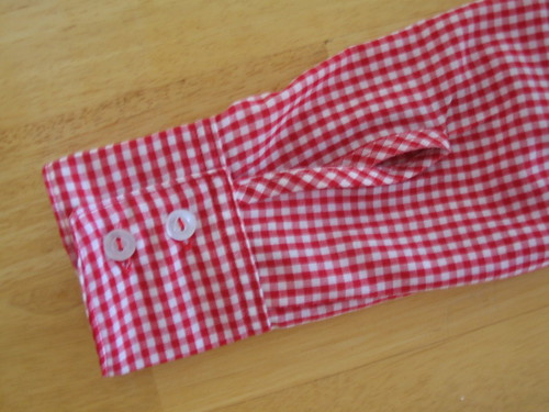gingham shirt (detail)